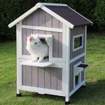 10 Best Outdoor Cat Houses For Multiple Cats